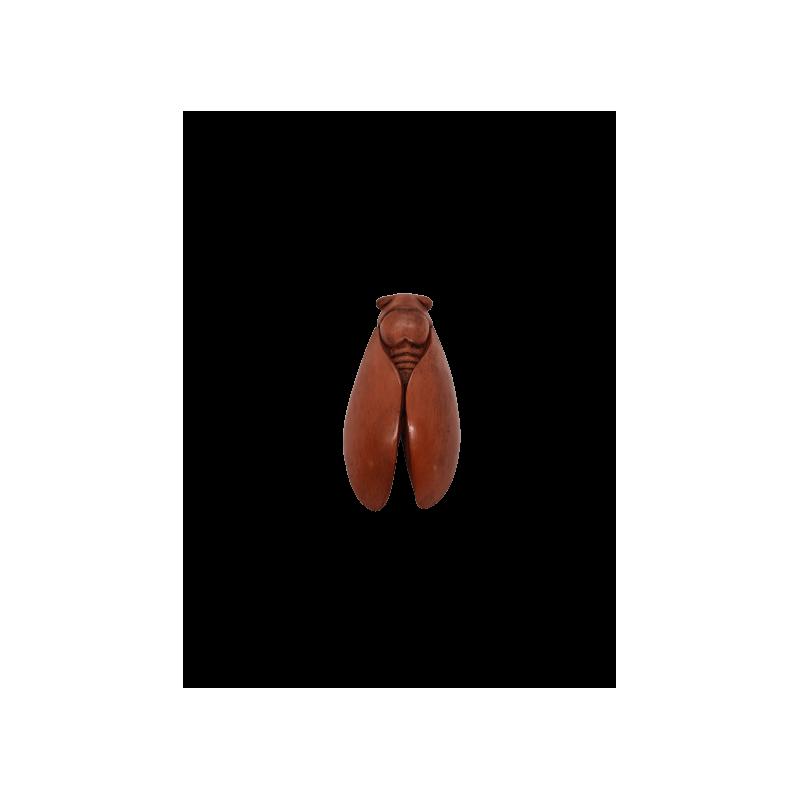 CIGALE 16cm T3 de Provence