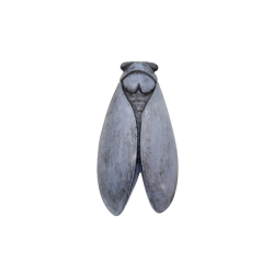 CIGALE 25cm GM (BLEU)