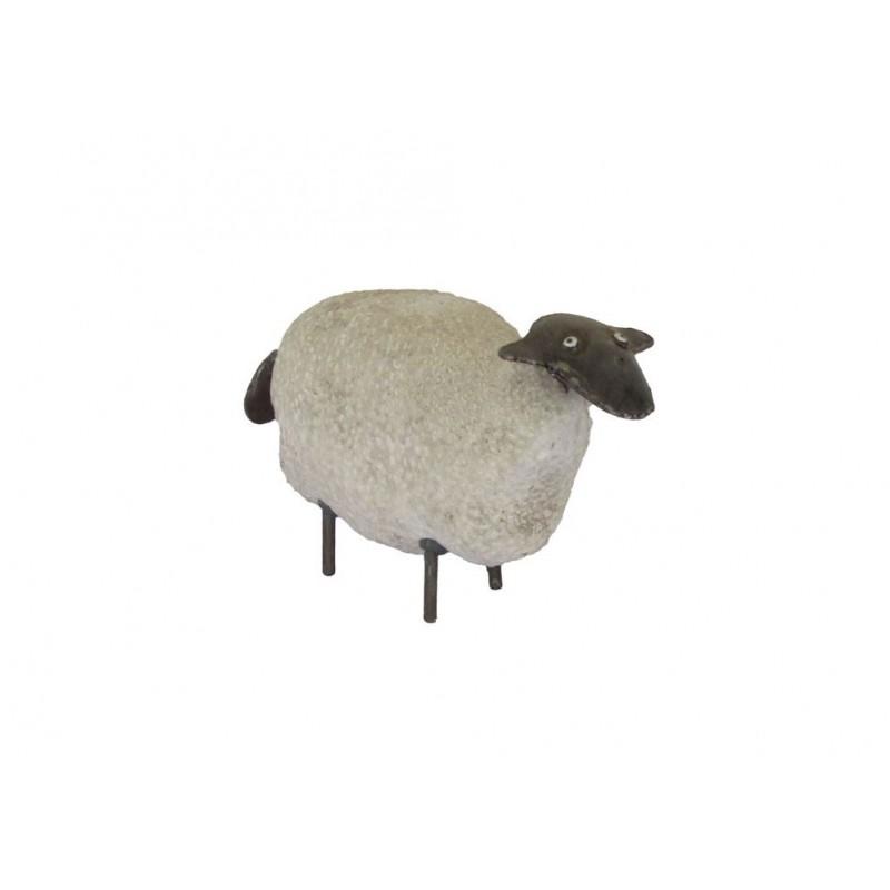Mouton Blanc (Pierre de Provence