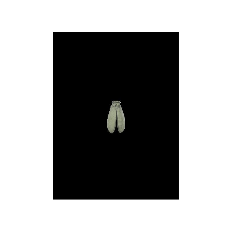 CIGALE 12cm T2 de Provence
