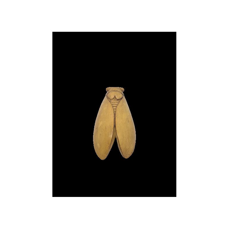 CIGALE 25cm GM de Provence