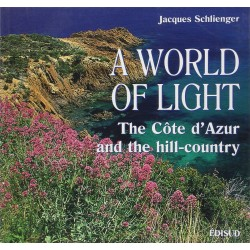 A WORLD OF LIGHT (SCHLIENGER)