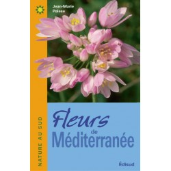 FLEURS DE MEDITERRANEE Provençal